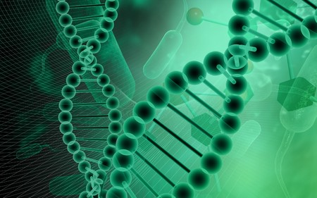 DNA model in green background  photo