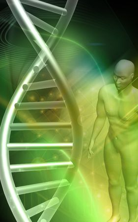 DNA model and human body  in green background Stock Photo - 4626983