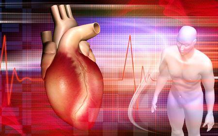 Heart and human body Stock Photo