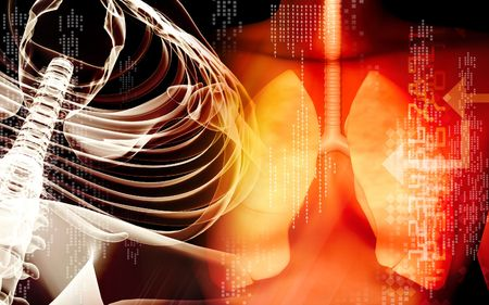 exhale: Human lungs and spine