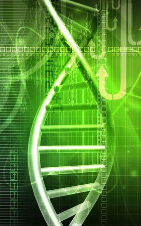 DNA Stock Photo - 4623062