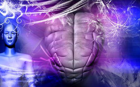 Human brain and human body   photo