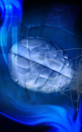 Digital illustration of a human brain in colour background illustration