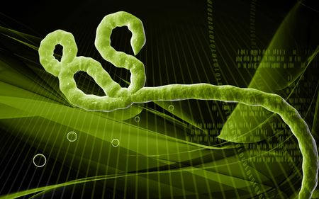 ebola: Digital illustration of Ebola virus in colour background