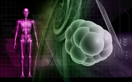 Digital illustration of  human body and stem cell  in colour  background  illustration