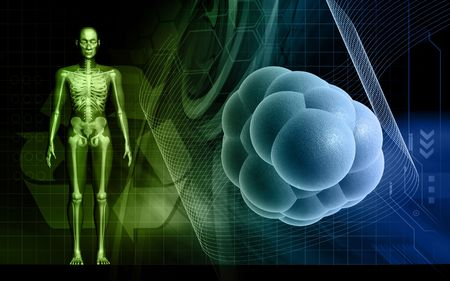 cell body: Digital illustration of  human body and stem cell  in colour  background