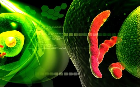 Digital illustration of  human cell   in colour  background Stock Illustration - 5388098