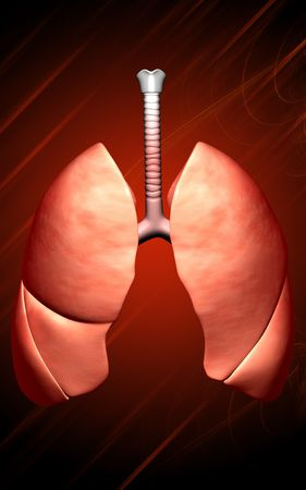 exhale: Digital illustration of human lungs in colour background  Stock Photo
