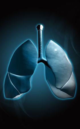 gullet: Ilustraci�n digital de los pulmones humanos en el color de fondo