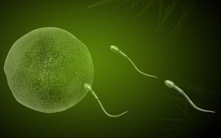 Digital illustration of  sperm  in colour  background Stock Illustration - 5577075