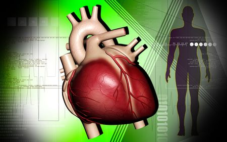 Digital illustration of  heart and human body  in  colour  background  illustration