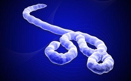 ebola: Digital illustration of Ebola virus in   colour background    Stock Photo