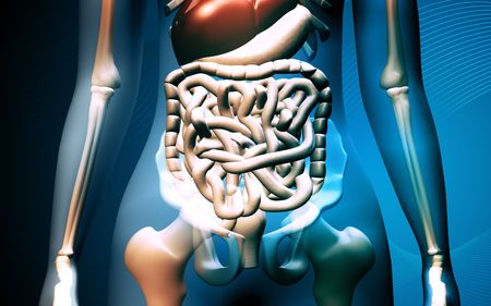 Digital illustration of human digestive system in colour background Stock Illustration - 5651636