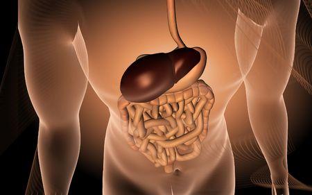 Digital illustration of human digestive system in colour background Stock Illustration - 5734869