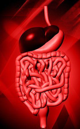 Digital illustration of human digestive system in colour background Stock Illustration - 5734913