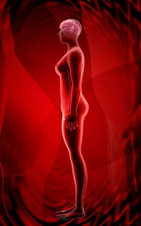 radial background: Digital illustration of  human body in colour  background   Stock Photo