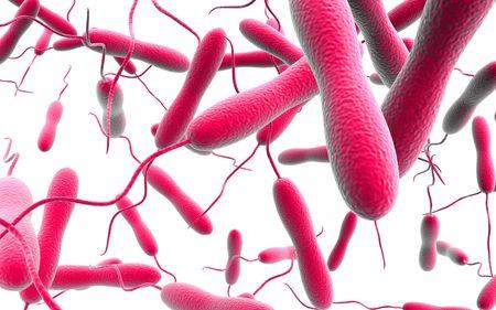 colera: Ilustraci�n digital de las bacterias del c�lera en fondo aislado  Foto de archivo