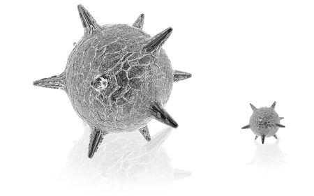 herpes virus: Digital illustration of  herpes virus in isolated  background