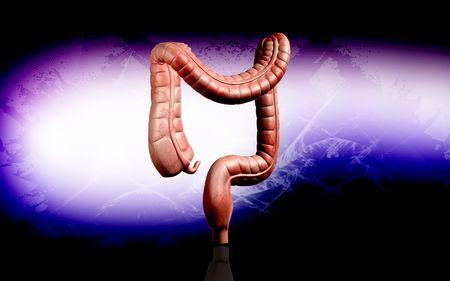 Digital illustration of human digestive system in colour background Stock Illustration - 5905279