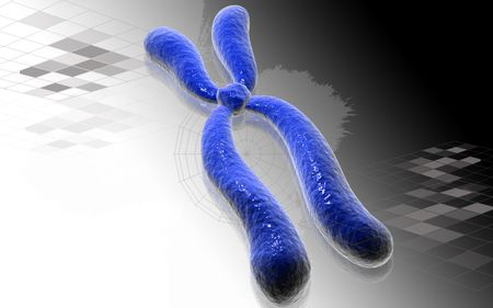 chromosome x y: Digital illustration  of chromosome in   isolated background