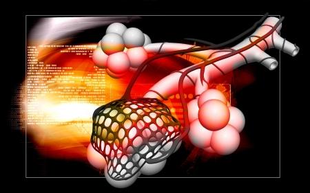 alveolos: Ilustraci�n digital de los alv�olos en el fondo aislado