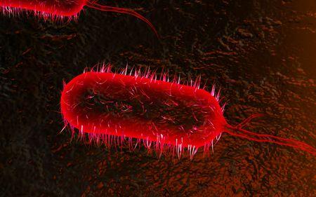 chol�ra: Illustration num�rique de bact�ries de chol�ra en arri�re-plan de couleur