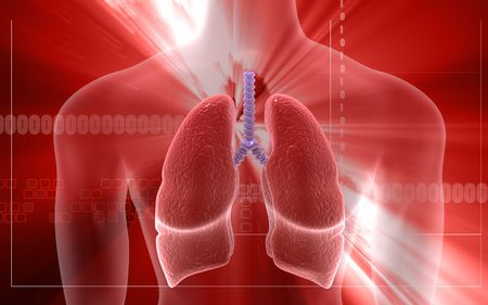 pulmones: Digital illustration of human body and lungs in colour background