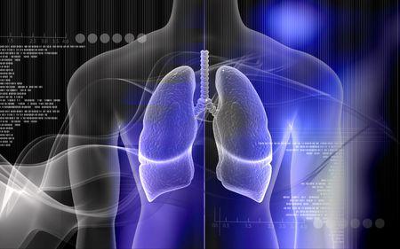 respiration: Illustration num�rique du corps humain et des poumons en fond de couleur