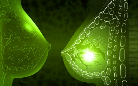 Digital illustration of breast cells in colour background    Stock Photo