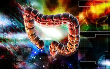 Digital illustration of large intestine in colour background  Stock Illustration - 6917668