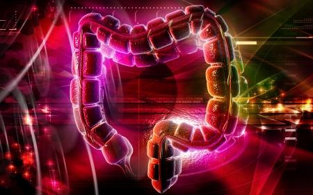 Digital illustration of large intestine in colour background Stock Illustration - 20409712