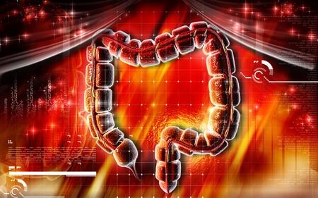 organos internos: Ilustraci�n digital del intestino grueso en el color de fondo  Foto de archivo