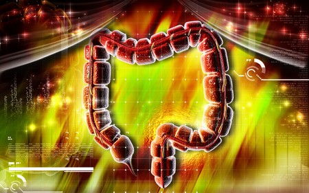 Digital illustration of large intestine in colour background  Stock Illustration - 6967862