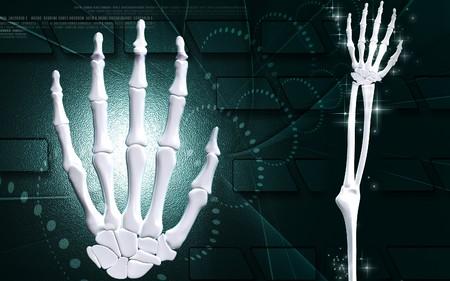 Digital illustration of hand bone in colour background Stock Illustration - 7100009