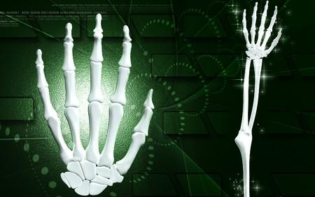 Digital illustration of hand bone in colour background   illustration