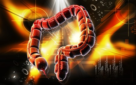 Digital illustration of large intestine in colour background Stock Illustration - 7134772