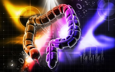 Digital illustration of large intestine in colour background  Stock Illustration - 7134773