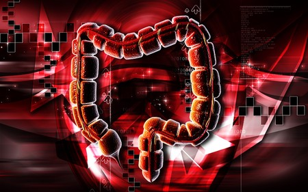 Digital illustration of large intestine in colour background  Stock Illustration - 7203276