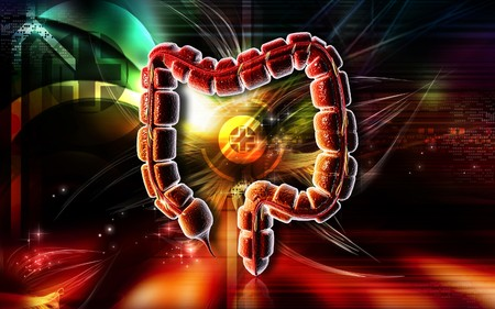 Digital illustration of large intestine in colour background  Stock Illustration - 7420285