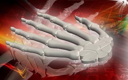 hypertensive: Digital illustration of hand bone in colour background