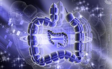 Digital illustration of large intestine in colour background Stock Illustration - 7829727