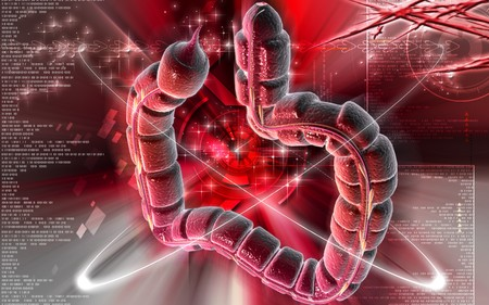 Digital illustration of large intestine in colour background Stock Illustration - 7913496