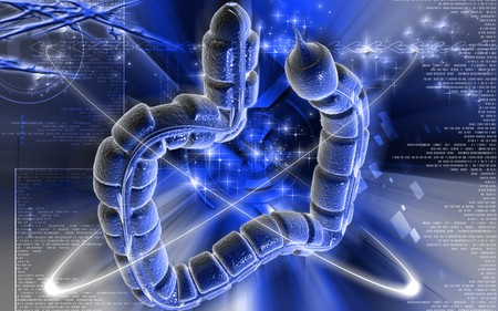 Digital illustration of large intestine in colour background Stock Illustration - 7913497