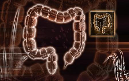Digital illustration of large intestine in colour background Stock Illustration - 8053679