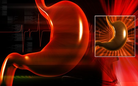 Digital illustration of  stomach  in colour  background Stock Illustration - 8078100
