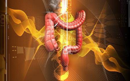 Digital illustration of human digestive system in colour background Stock Illustration - 8197110
