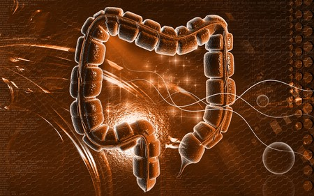 Digital illustration of large intestine in colour background Stock Illustration - 8197246