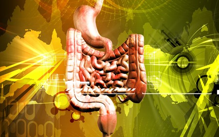 Digital illustration of human digestive system in colour background Stock Illustration - 8197295