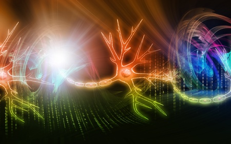 Digital illustration of  neuron  in colour  background  Stock Illustration - 8560944