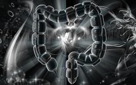 Digital illustration of large intestine in colour background Stock Illustration - 8682883